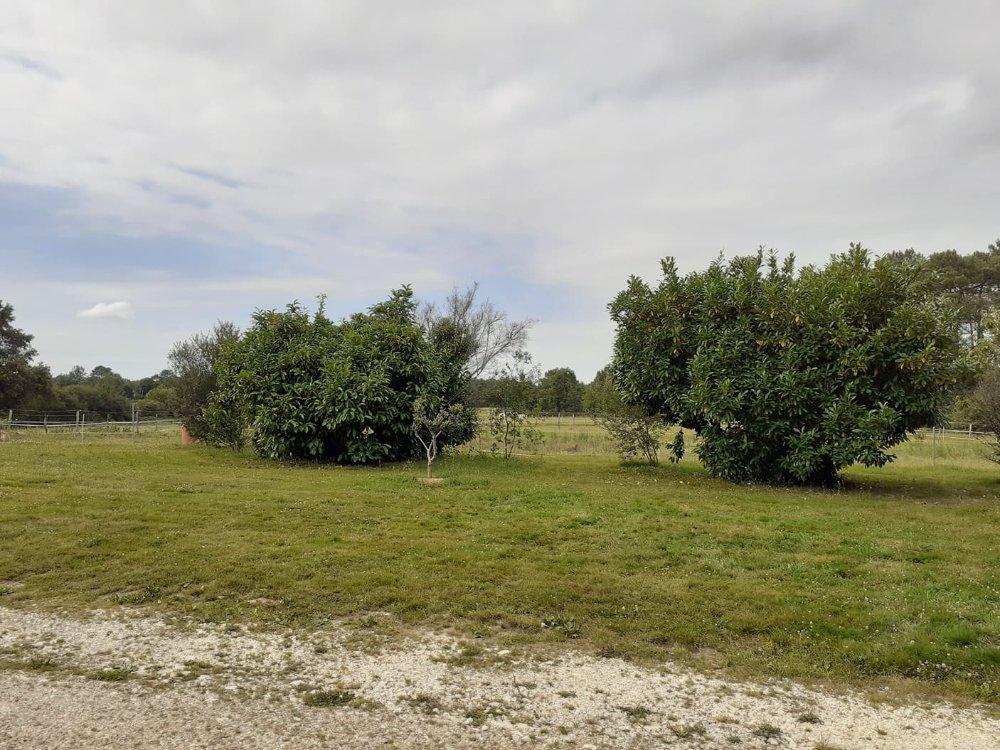 Aire camping-car à Porchères (33660) - Photo 1